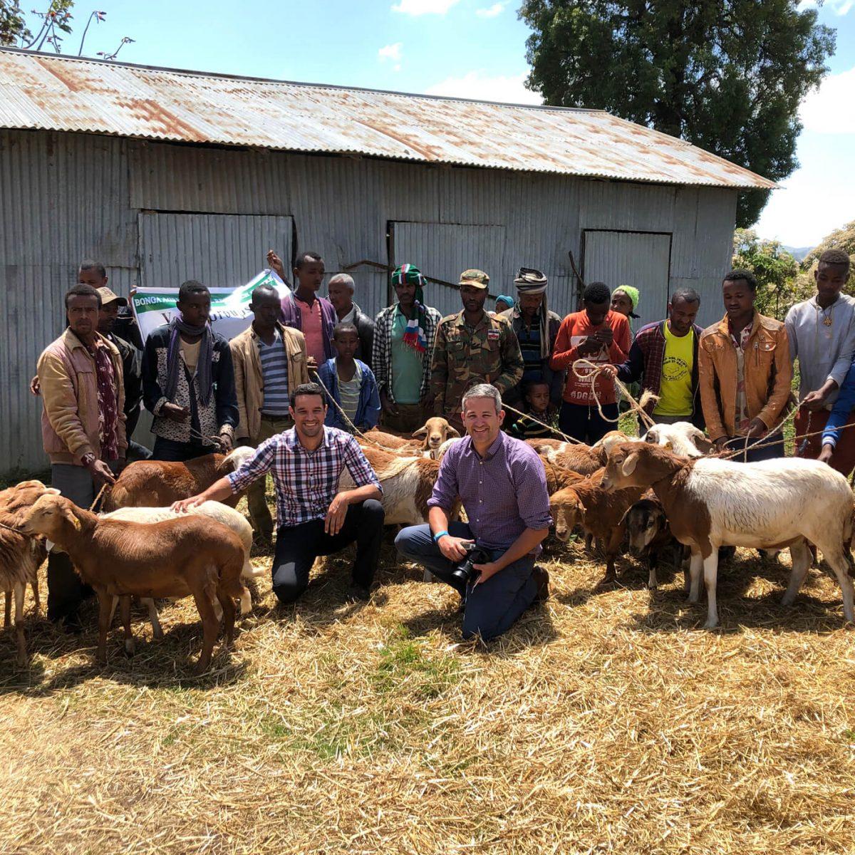 AbacusBio brings AniCloud breeding software into Ethiopia & Tanzania