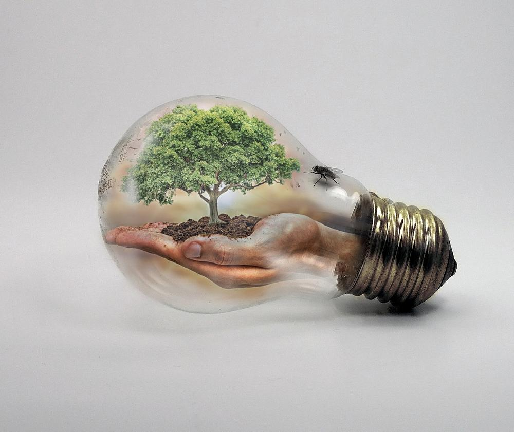 Climate change light bulb